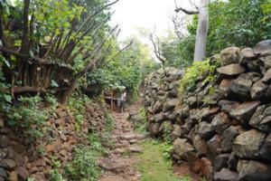 Konso Village High Walls 2