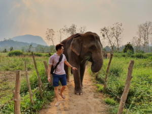 Walk with Elephants Luang Prabang